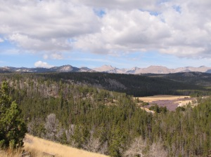 Looking over Shoshone National Forest at the Wind River Range, after driving over and through