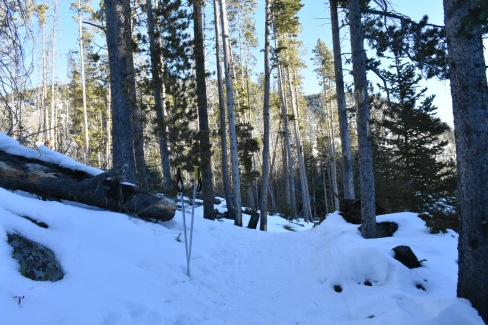 Source: Mountain Adventurer 307 Photography